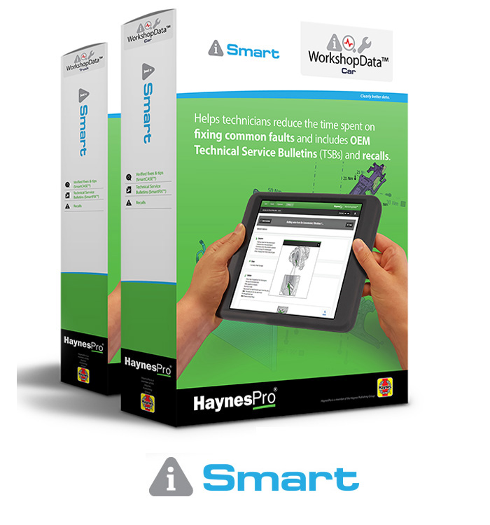 haynes-smart